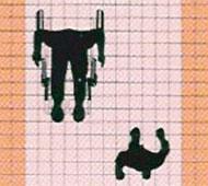 殘疾人士通道指引
